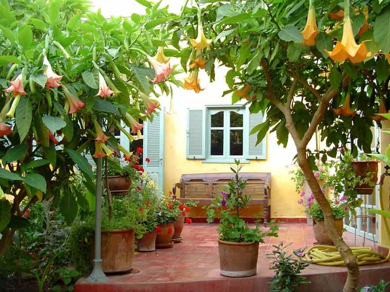 voyage pas cher maroc location hotel riad pas cher maroc hotels ryads. Black Bedroom Furniture Sets. Home Design Ideas